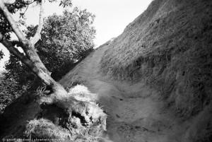 Elysian Park SIngle Track Trail
