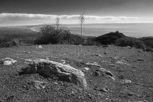 View from Topanga