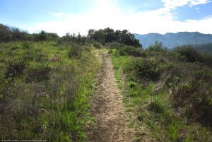 Musch Trail Topanga