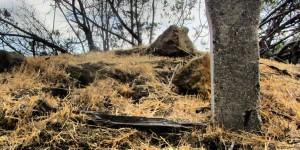 Stonehenge, Griffith Park