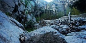Gabrielino Trail