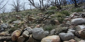 Piles of rocks.