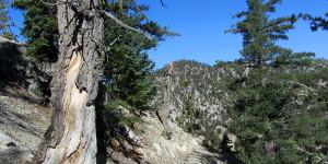 Mt Williamson, mile 27