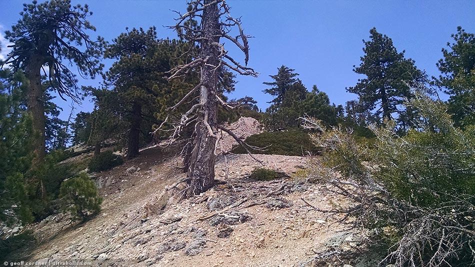 Pleasant View Ridge