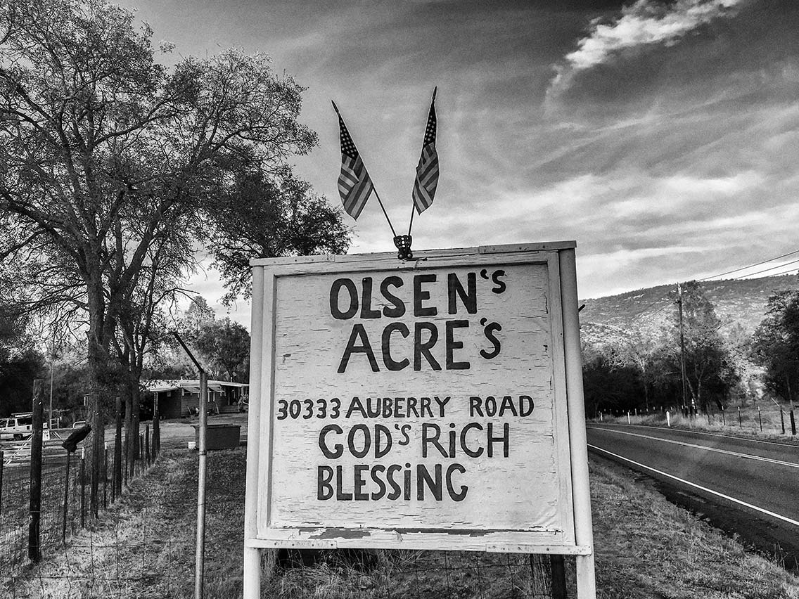 Olsen's Acre's