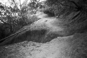 Single Track Trail, Elysian Park