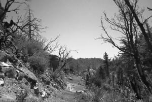 Kenyon Devore Trail