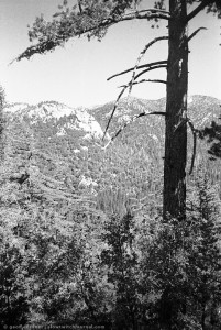 San Jacinto Mountains