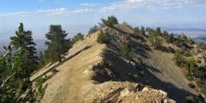 Mt. Baden Powell