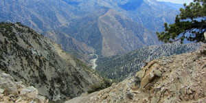 Mt. Baden Powell View