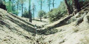 Bent Ground