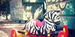 Discarded Zebra