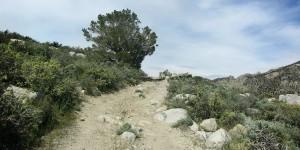 Rocky truck trail