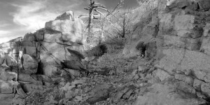 Mt Lowe West Trail