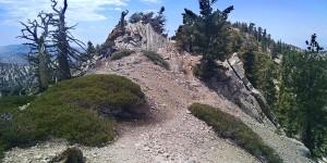 Mt. Williamson, peak