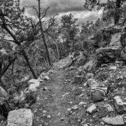 Cedro Peak singletrack