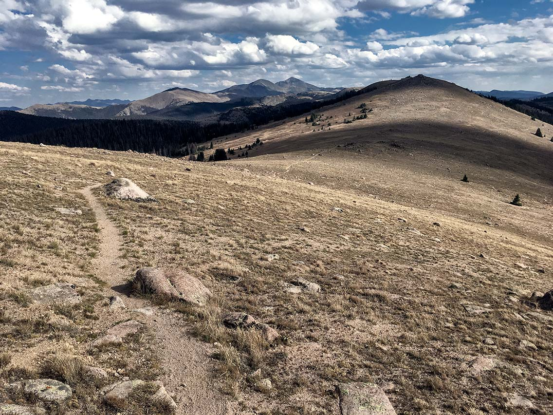Continental Divide Trail above Monarch Pass Colorado